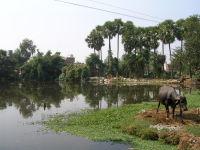 ムチャリンダ湖